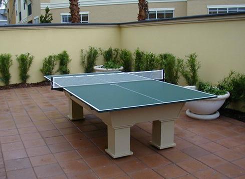 Masa tenis folosita